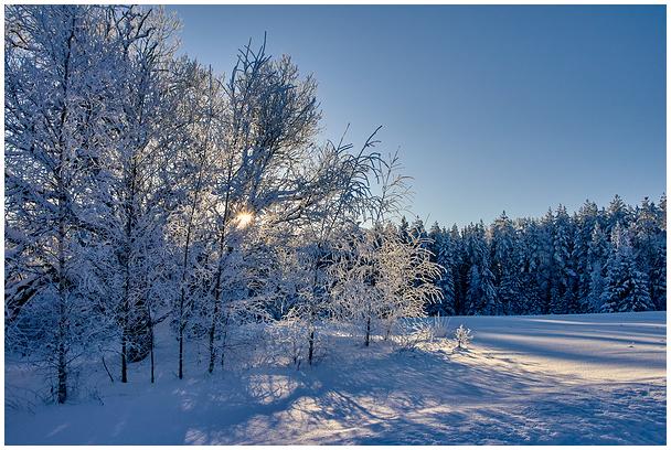 Lumine talv Võrumaal