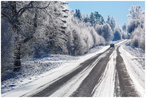 Talvehommik / Winter morning