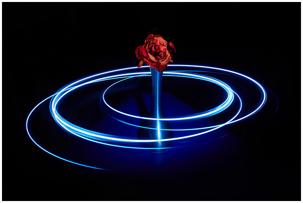 Circle Round The Sun