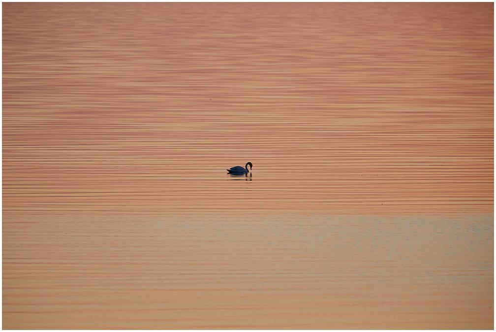 Kabli ranna päikseloojang