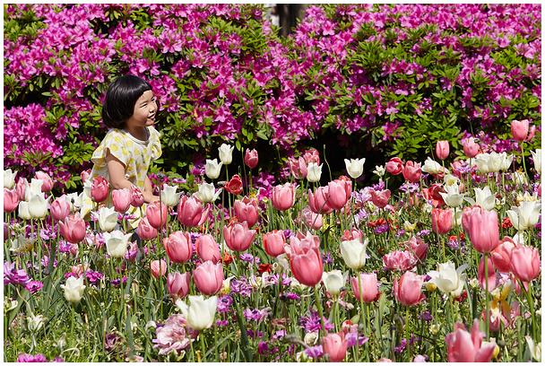 Yokohama Flower Garden