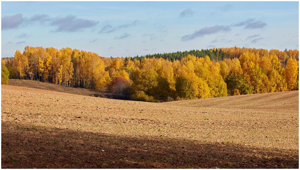 Sügisene Lõuna-Eesti