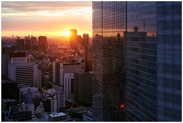 Morning in Tokyo