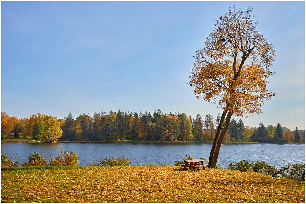 Viitina järv