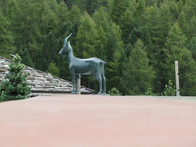 Bolzano and surroundings 40