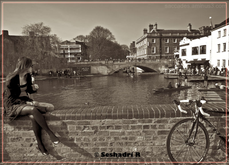 I'm so lonely.... I've no buddy ;)_Cambridge