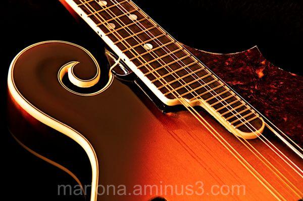 Mandolina de cargol / F-style mandolin