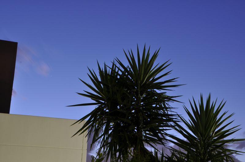 West Melbourne #4