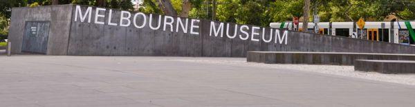 Melbourne Museum #9