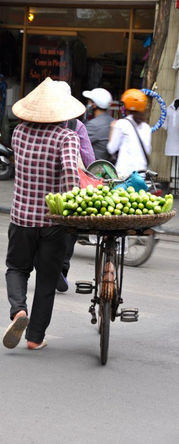 Hanoi Cucumber