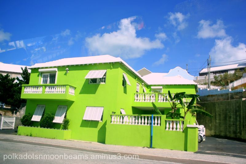 A Neon Green House Architecture Photos The World Is
