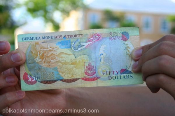 money dollar bill colors bermuda island summer