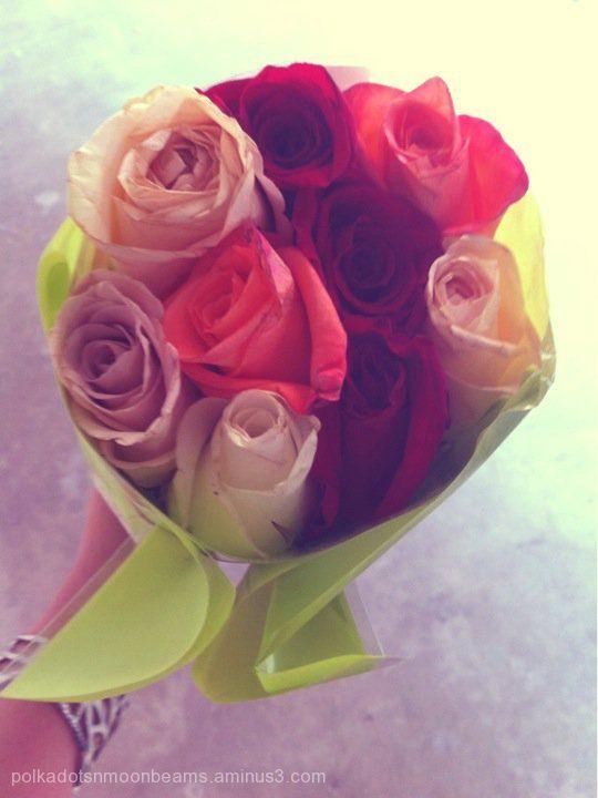 roses flowers lomo bouquet