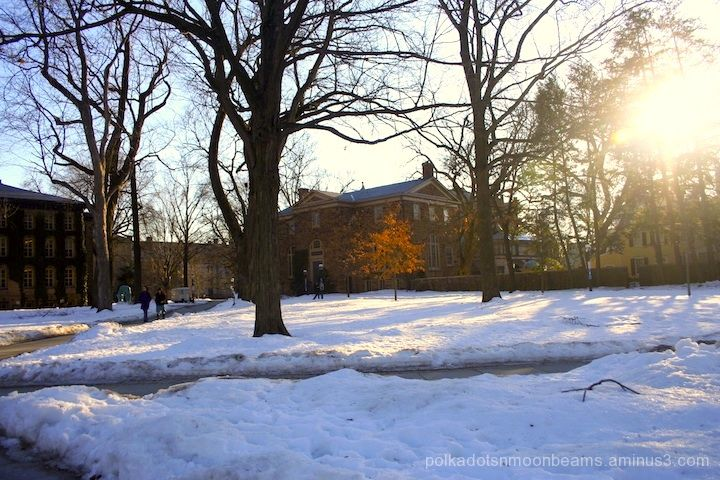 sun snow Princeton campus