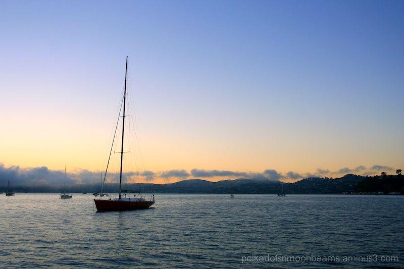 bay water sea sailboat evening