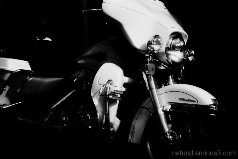 King of bike