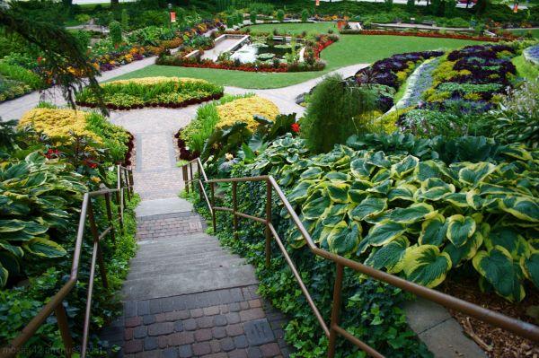 Sunken Garden 2010