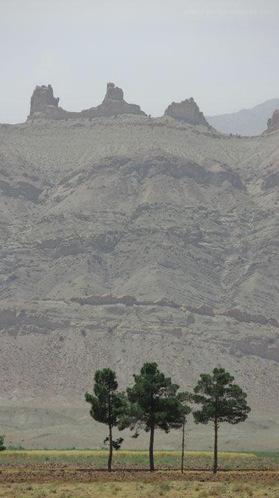 Three Tree, mountain, Kashan