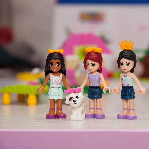 Friends, LEGO, toy