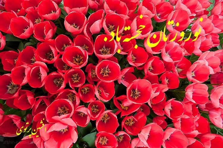 Happy New Year, 1393, Nowrouz, Persia, Iran, Sprin