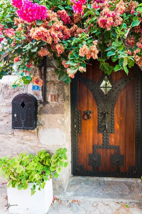 Door, Gate, Flower, Spring, Budroom