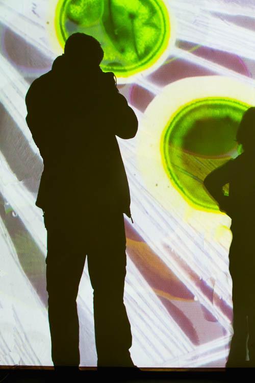 Selfi, otto piene, rainbow, Zero, Contemprory art,