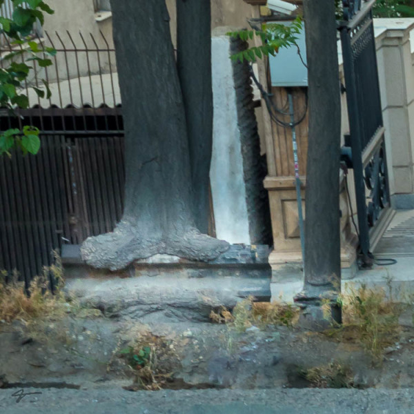 Gauad Rail, Tree, fusion, merge, Tehran