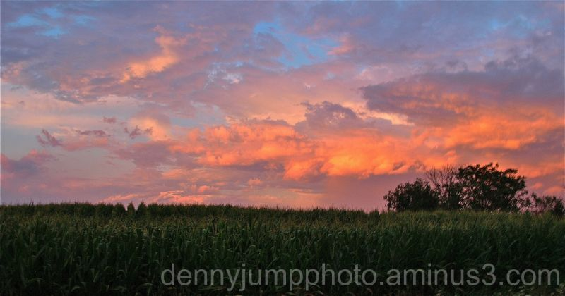 Clouds Aglow  - Corn is getting Happy