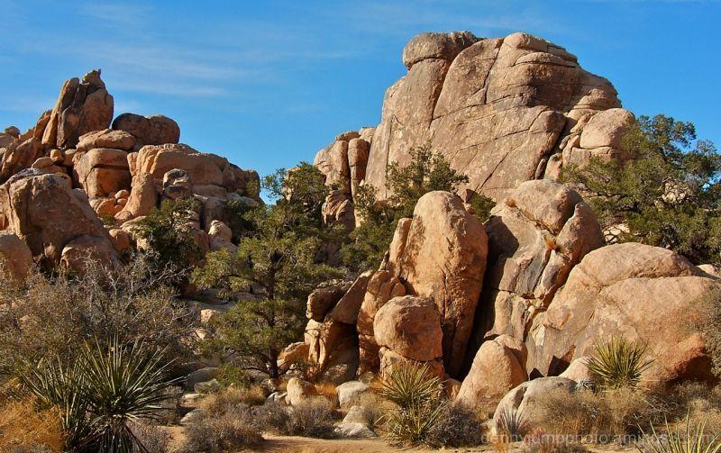 Hidden Valley mammoth Rocks