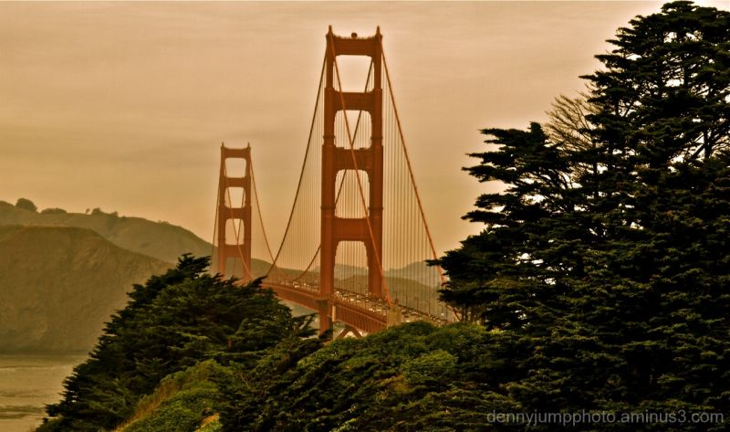 Presidio view of Golden Gate Bridge