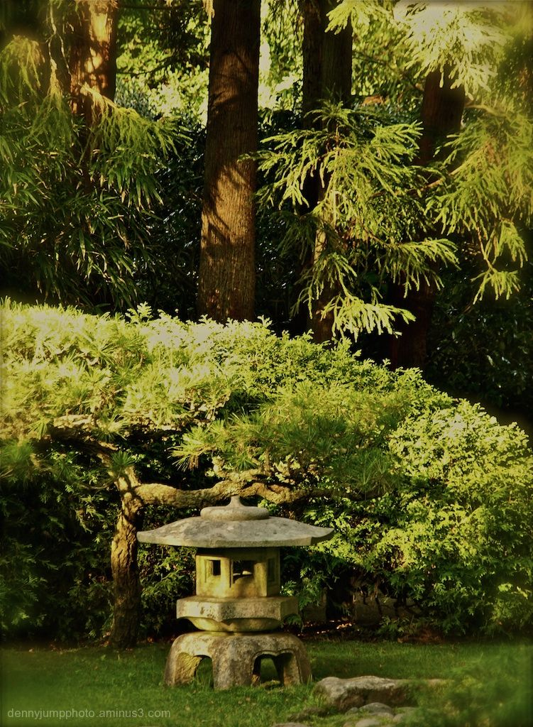 Japanese Tea Garden - Golden Gate Park