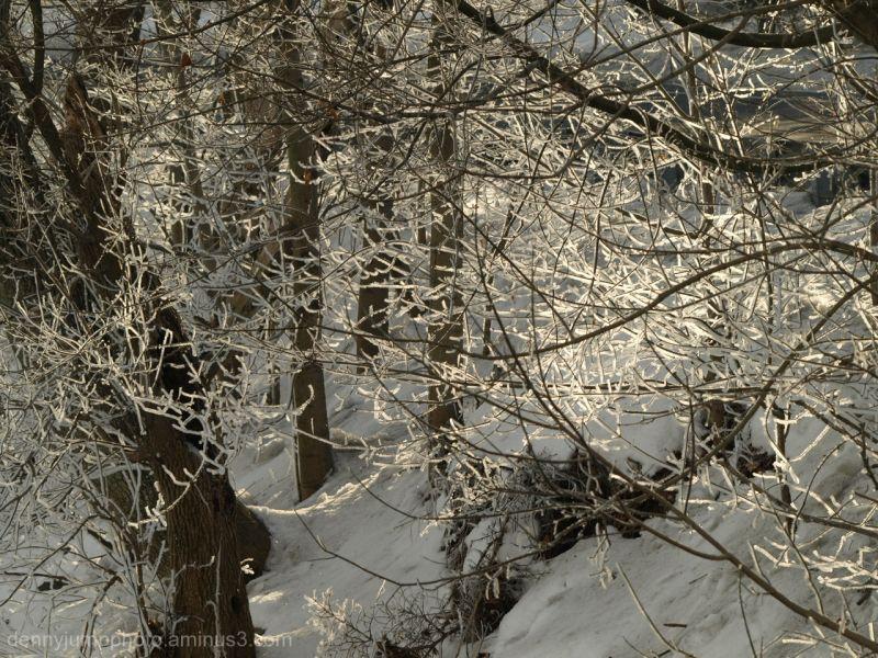 The Bushkill Creek in Area