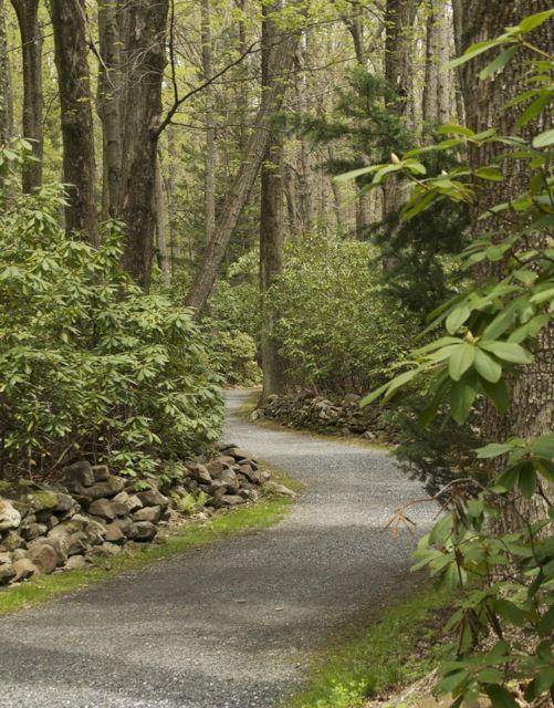 Graver Arboretum - Bangor, PA  Scene 2