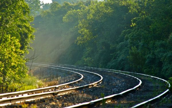 Misty Rail