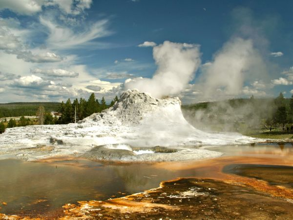 Castle Geyser   Yellowstone NP