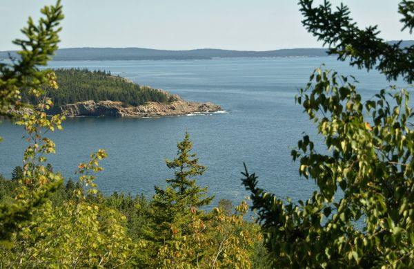 Back to Acadia National Park