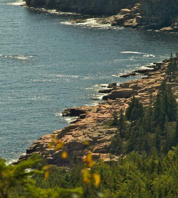 Acadia Rocks -1