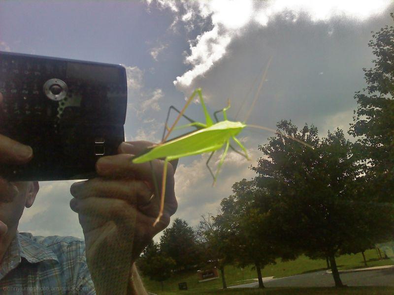 Don't Bug Me Man!