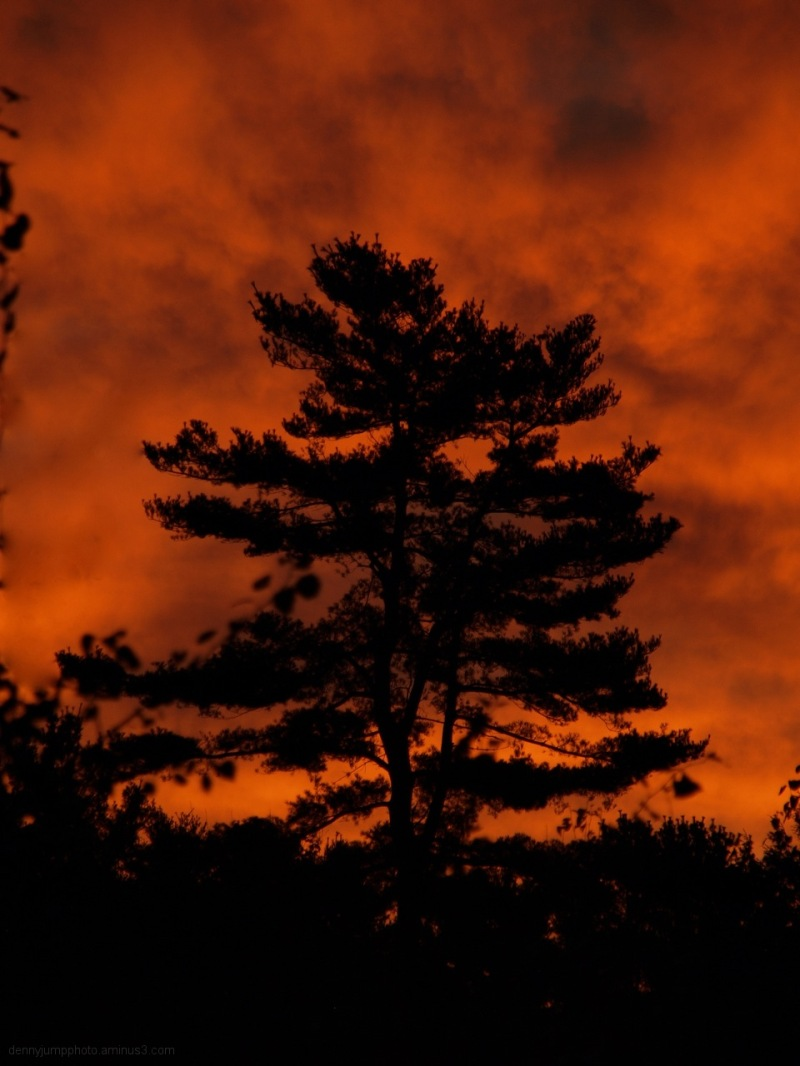 Fiery Vermont SUnrise