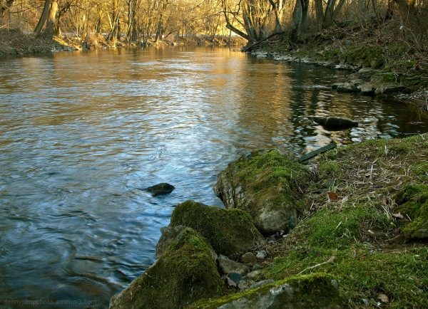 The Bushkill Creek    Spring is arriving