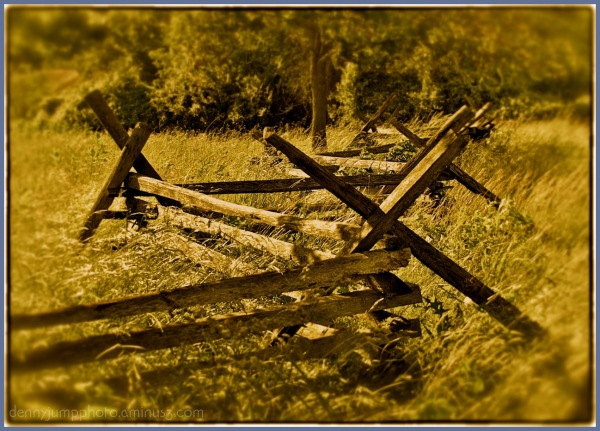 Richard's Fence in Antique