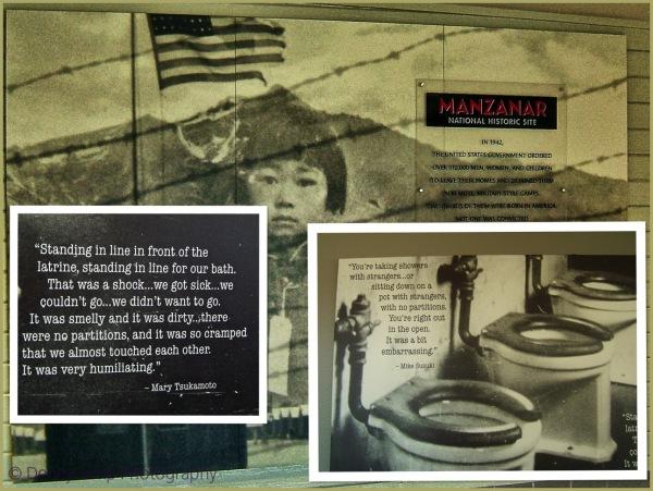 """""""Degradation""""   Manzanar, Part 2"""