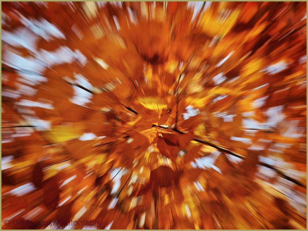 Autumn Hallucinations