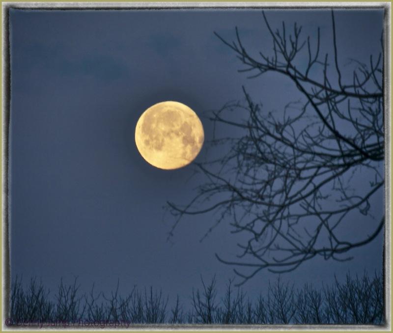 """""""Worm"""" Moon"""