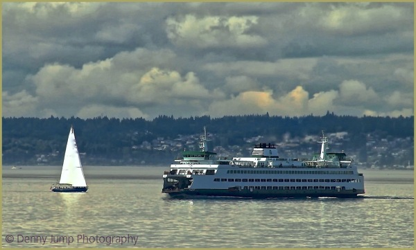 Puget Sound Fairy