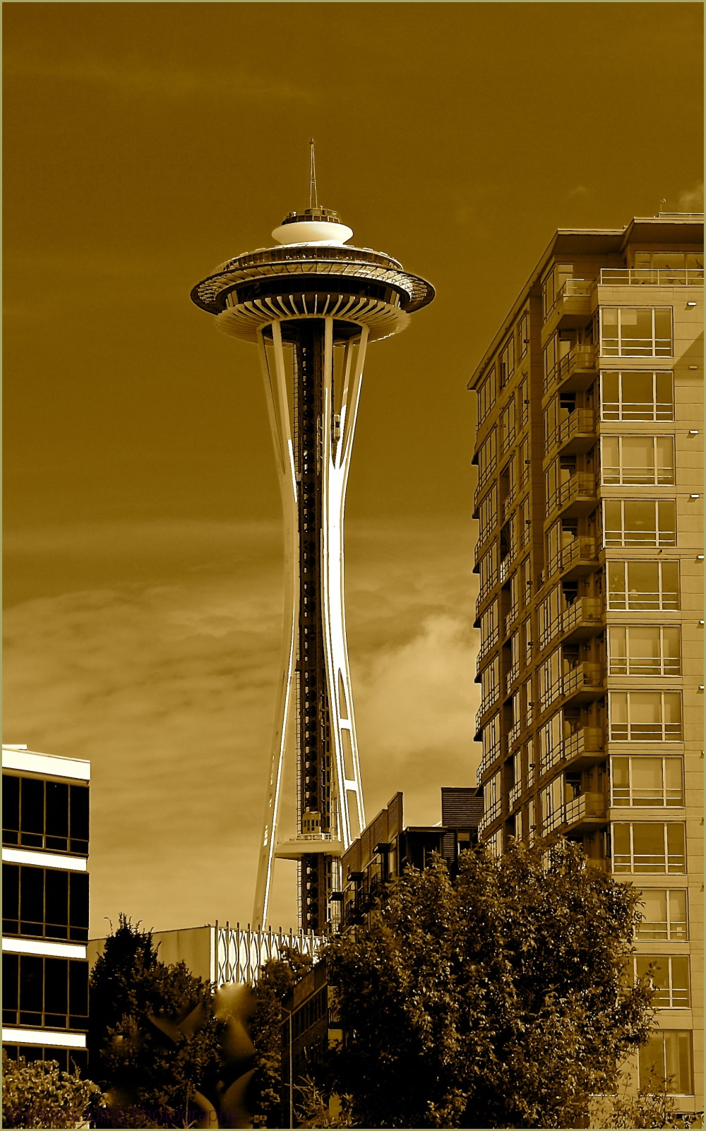 The Classic Space Needle