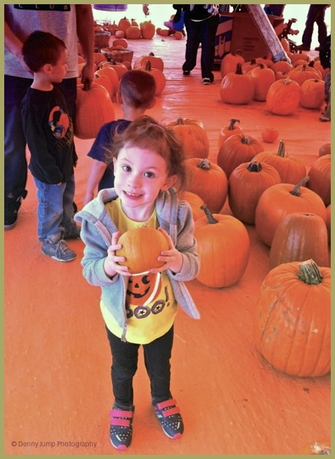 """I want THIS Pumpkin!"""