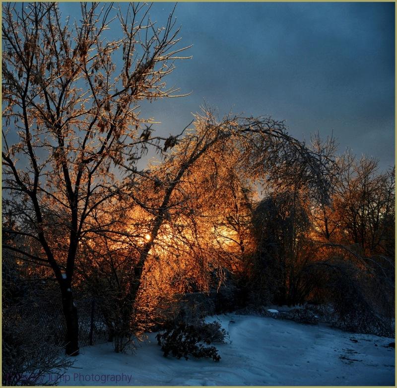 Icy Vermont