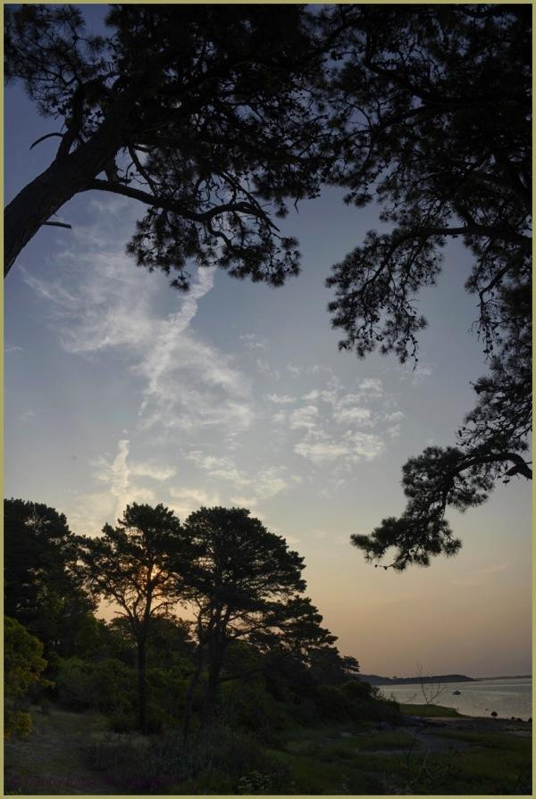 """""""The Cape""""    Sunrise"""