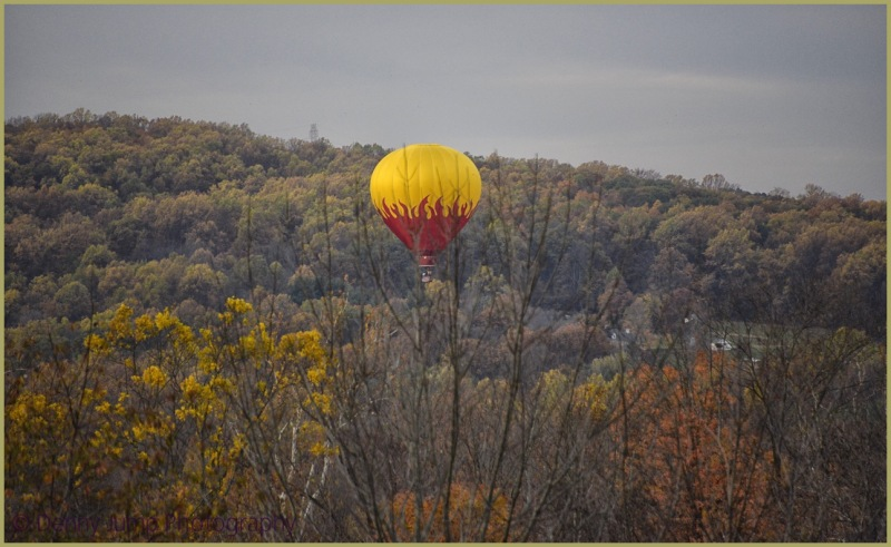 Balloon Comes Home